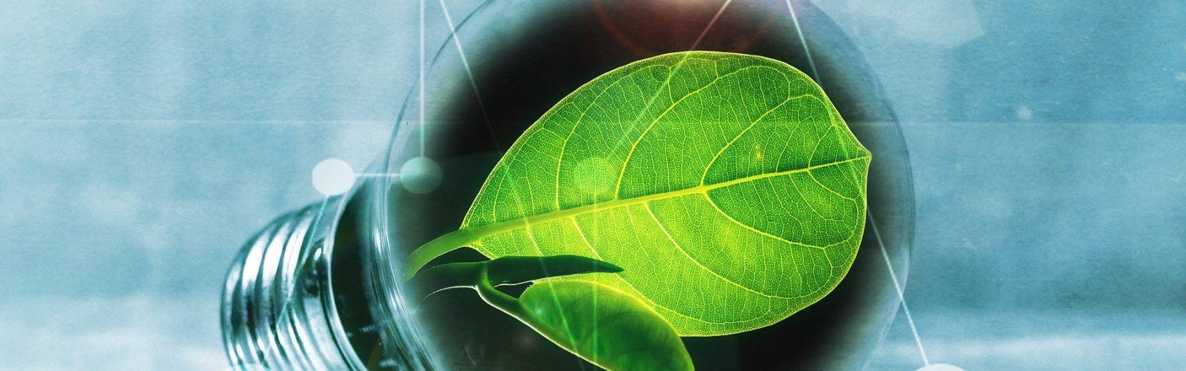 Nachhaltigkeit; Energiewende; Ideen; Konzepte; Entrepreneurship
